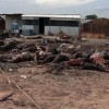 South Sudan rebels kill more than 200 at mosque in ethnic massacre: UN