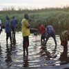 Horrors Happening in South Sudan