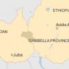 Deadly Ethnic Strife Convulses Ethiopia-South Sudan Border